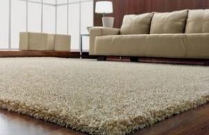 fibra-carpete
